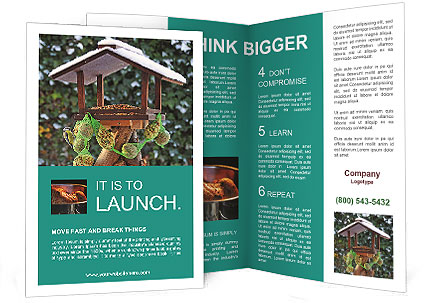 0000093082 Brochure Template