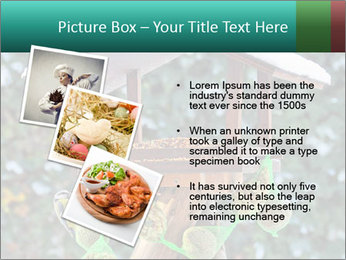 Bird feeder PowerPoint Templates - Slide 17