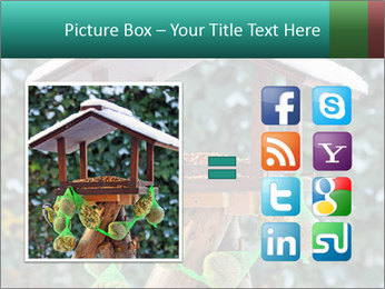 Bird feeder PowerPoint Templates - Slide 21