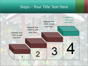 Bird feeder PowerPoint Templates - Slide 64
