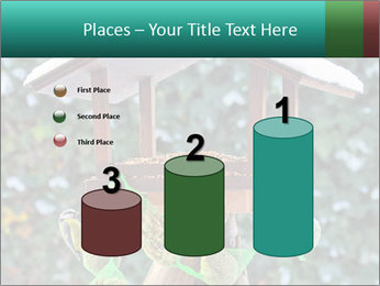 Bird feeder PowerPoint Templates - Slide 65
