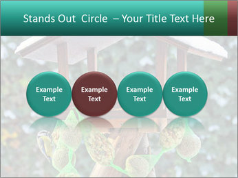 Bird feeder PowerPoint Templates - Slide 76