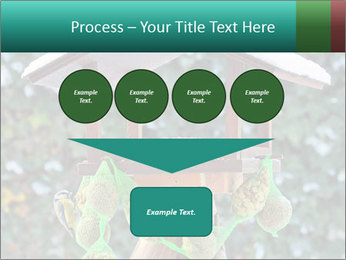 Bird feeder PowerPoint Templates - Slide 93