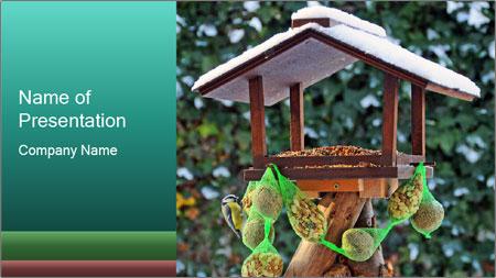 Bird feeder PowerPoint Template