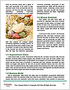 0000093082 Word Templates - Page 4