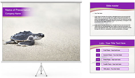 Sea turtle PowerPoint Template