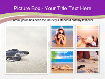 Sea turtle PowerPoint Template - Slide 19