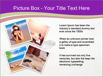 Sea turtle PowerPoint Template - Slide 23