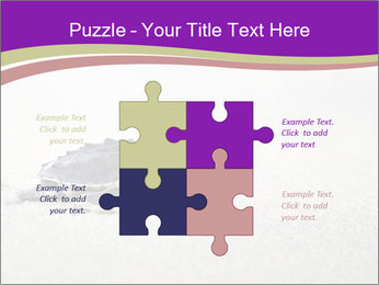 Sea turtle PowerPoint Template - Slide 43