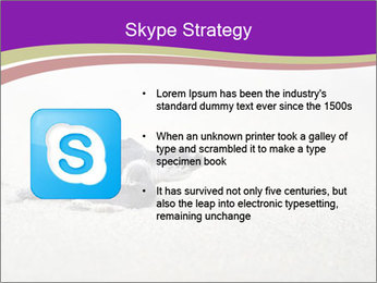Sea turtle PowerPoint Template - Slide 8