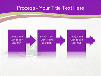 Sea turtle PowerPoint Template - Slide 88