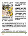 0000093087 Word Templates - Page 4