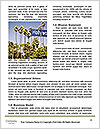 0000093091 Word Templates - Page 4