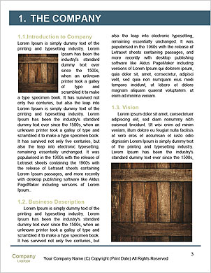 0000093093 Word Template - Page 3