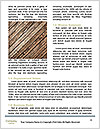 0000093093 Word Templates - Page 4