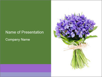 Flowers iris PowerPoint Template
