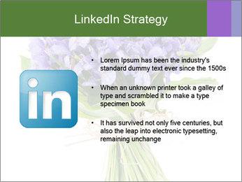 Flowers iris PowerPoint Template - Slide 12