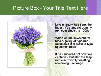 Flowers iris PowerPoint Template - Slide 13