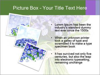 Flowers iris PowerPoint Template - Slide 17