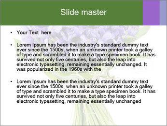 Flowers iris PowerPoint Template - Slide 2