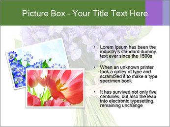 Flowers iris PowerPoint Template - Slide 20