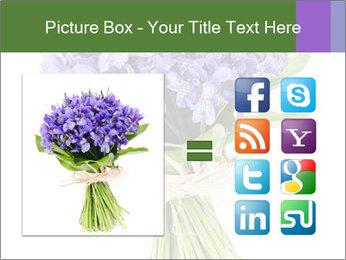 Flowers iris PowerPoint Template - Slide 21
