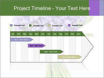 Flowers iris PowerPoint Template - Slide 25