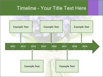 Flowers iris PowerPoint Template - Slide 28