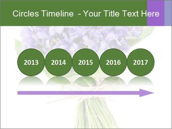 Flowers iris PowerPoint Template - Slide 29