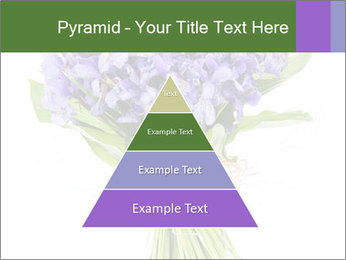Flowers iris PowerPoint Template - Slide 30