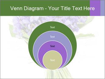 Flowers iris PowerPoint Template - Slide 34