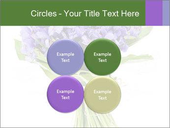 Flowers iris PowerPoint Template - Slide 38