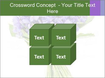 Flowers iris PowerPoint Template - Slide 39
