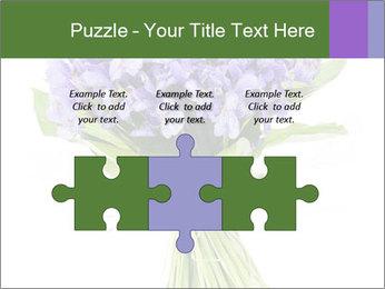 Flowers iris PowerPoint Template - Slide 42