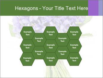 Flowers iris PowerPoint Template - Slide 44