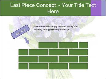 Flowers iris PowerPoint Template - Slide 46