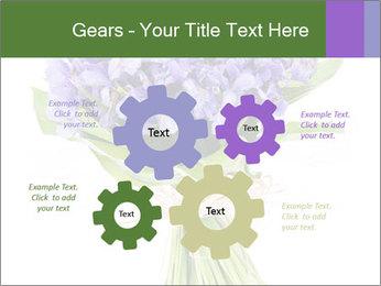 Flowers iris PowerPoint Template - Slide 47