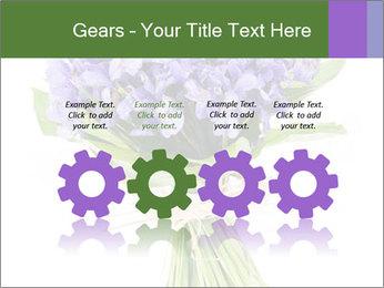 Flowers iris PowerPoint Template - Slide 48