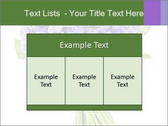 Flowers iris PowerPoint Template - Slide 59