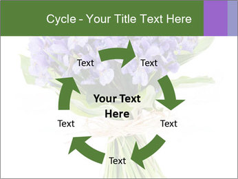 Flowers iris PowerPoint Template - Slide 62