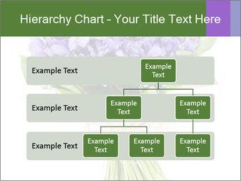 Flowers iris PowerPoint Template - Slide 67