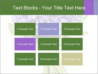 Flowers iris PowerPoint Template - Slide 68