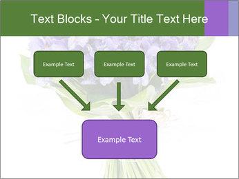 Flowers iris PowerPoint Template - Slide 70