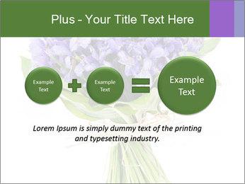 Flowers iris PowerPoint Template - Slide 75