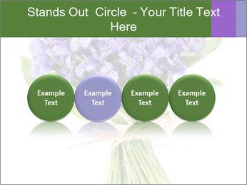 Flowers iris PowerPoint Template - Slide 76