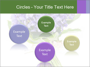 Flowers iris PowerPoint Template - Slide 77