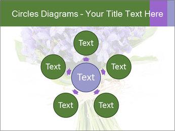 Flowers iris PowerPoint Template - Slide 78