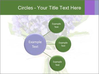 Flowers iris PowerPoint Template - Slide 79