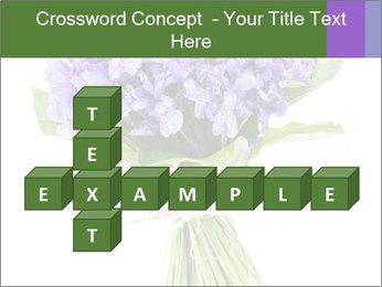 Flowers iris PowerPoint Template - Slide 82