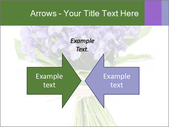 Flowers iris PowerPoint Template - Slide 90